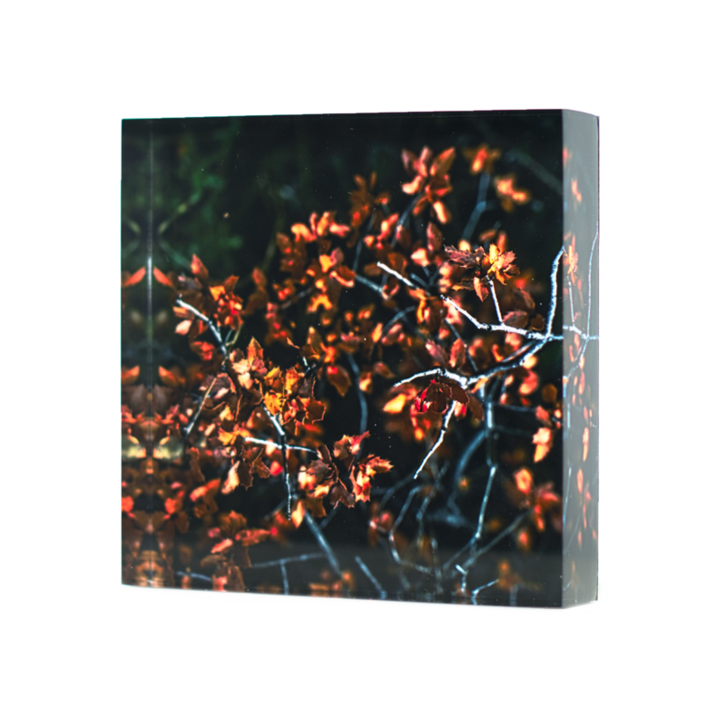 Acrylic glass block Golden Leaves