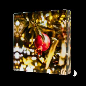 Acrylic-glass-photo-block-Pomegranate